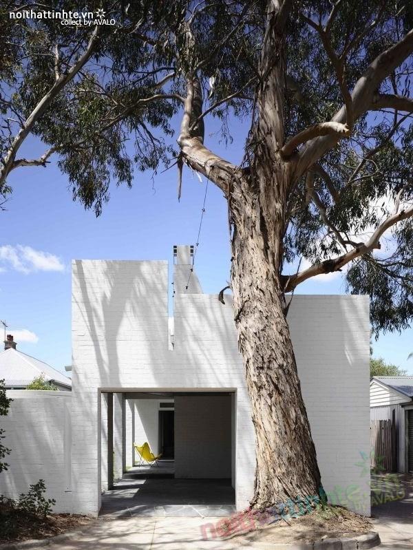 Không gian nhà cấp 4 đẹp ở Melbourne - Australia