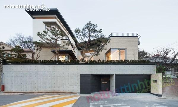 Mẫu nhà đẹp 2 tầng hình chữ V ở Hàn Quốc