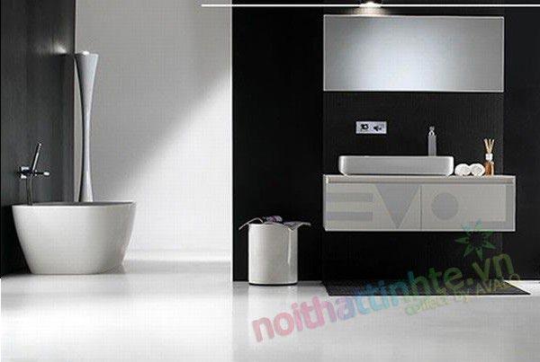Mau nha tam dep : Black or white