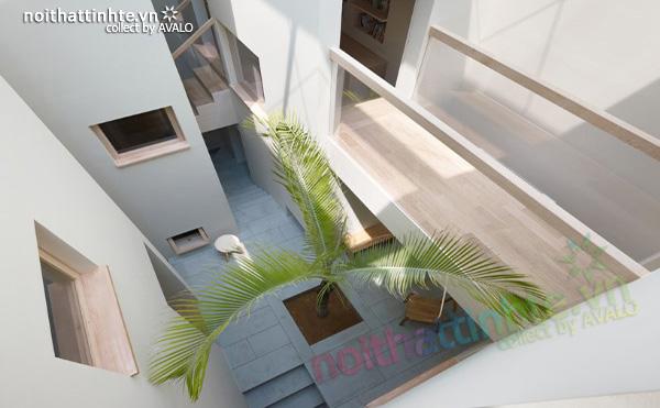 Thiết kế nhà phố Nhật bản - Nhà Goido