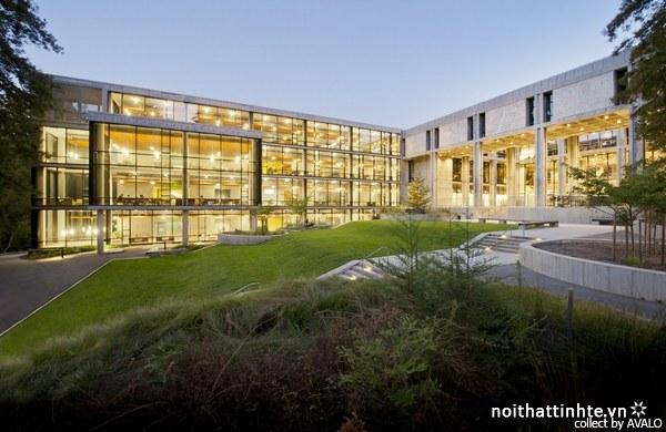 Thiết kế nội thất thư viện McHenry – Kiến trúc sư Boora