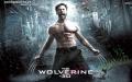 Hang o co view nhin hoan hao cua Nguoi Soi X-man Wolverine tai thanh pho xinh dep Manhattan 2