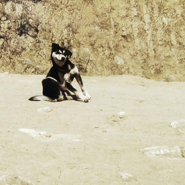 Đắm Nhìu Cồ San – Pu Ta Leng lỗi hẹn em ơi ! 20