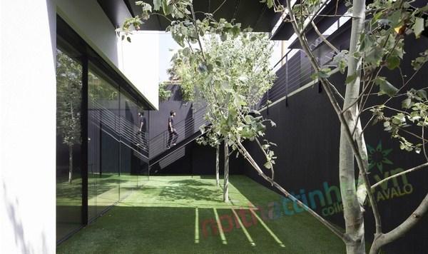 Biệt thự đẹp đương đại Ramat Gan 06