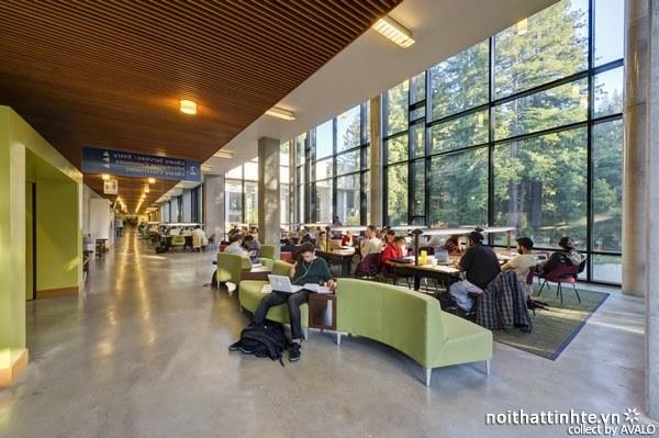 Thiết kế nội thất thư viện McHenry 01