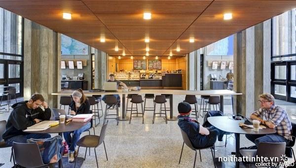 Thiết kế nội thất thư viện McHenry 03