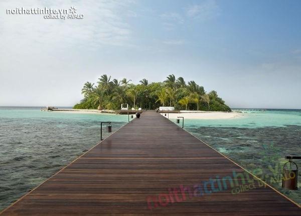 Biệt thự đẹp nghỉ dưỡng trên đảo Coco - Maldives 01