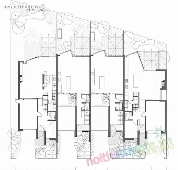 Thiết kế nhà lô phố Elwod - KTS Alcock 10
