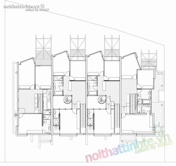 Thiết kế nhà lô phố Elwod - KTS Alcock 11