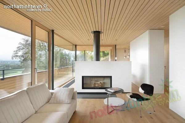 Mẫu nhà đẹp 2 tầng nằm trên sườn dốc ở Thụy Sỹ 01