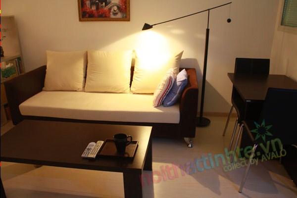 trang trí nội thất nhà nhỏ 43 m2 02